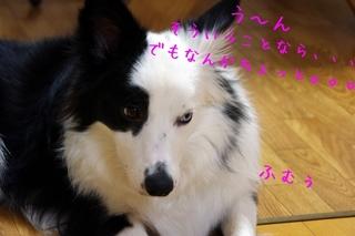 好きキライ4.jpg