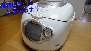 ECJ-BG10.jpg