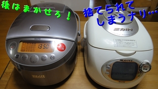ECJ-BG10_3.jpg