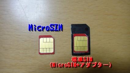 SIM01.jpg