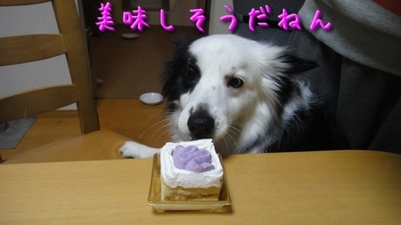 birthday05.jpg