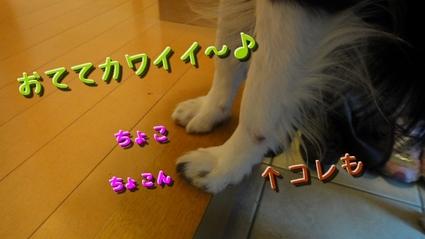 hifu3.JPG