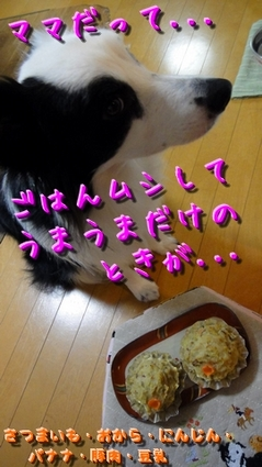 komogomo3.JPG