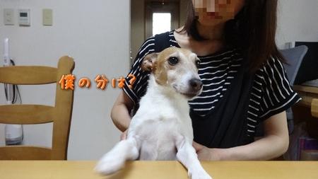 koyama02.jpg