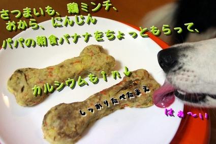 sakubon3.JPG
