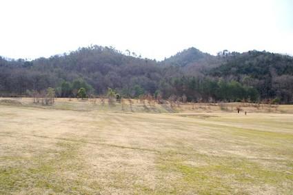 sibafu02.jpg
